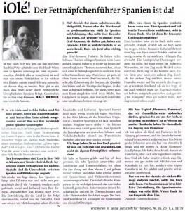 Interview ¡anda! Zeitschrift für Flamenco